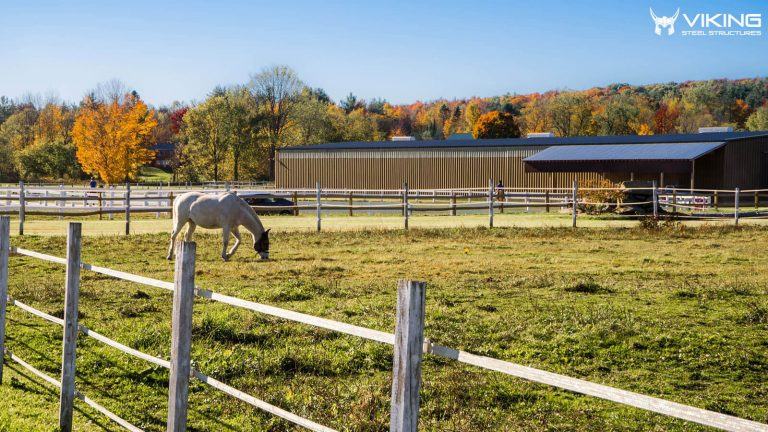 Best Tips to Consider Before Buying a Metal Horse Barn