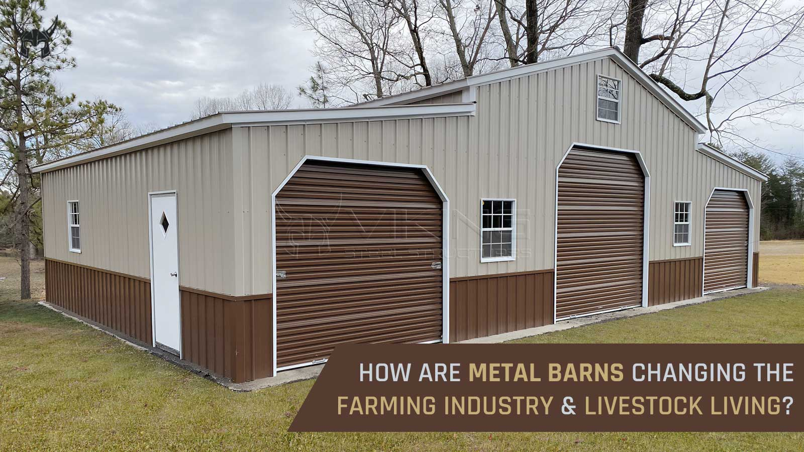 How are Metal Barns Changing the Farming Industry and Livestock Living?