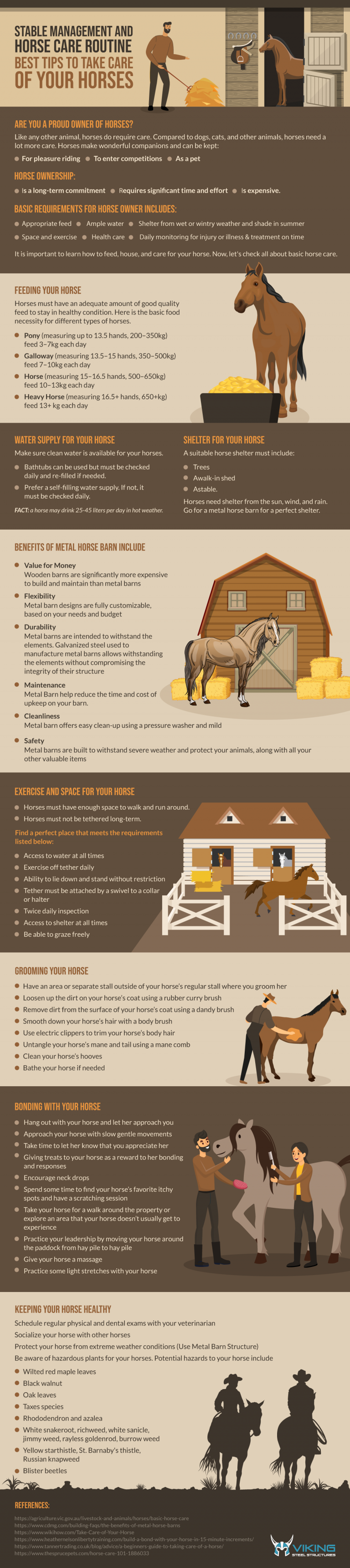 Stable Management and Horse Care Routine: Best Tips to Take Care of Your Horses